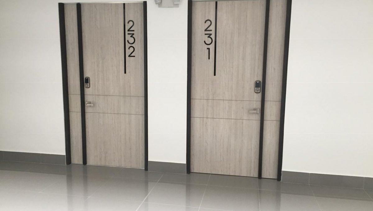 cons 231 y 232 1